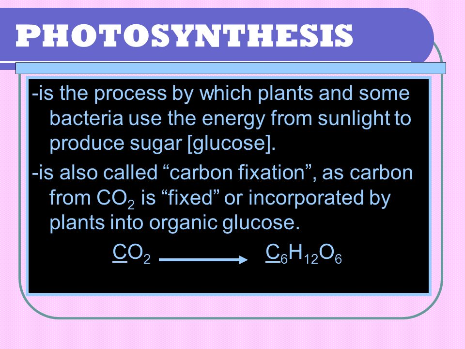PHOTOSYNTHESIS -is the process by which plants and some bacteria use the energy from sunlight to produce sugar [glucose].